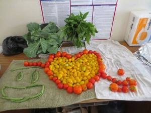 RD Tomato heart Aug 14
